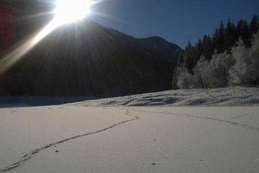 Winterwandern in Ruhpolding
