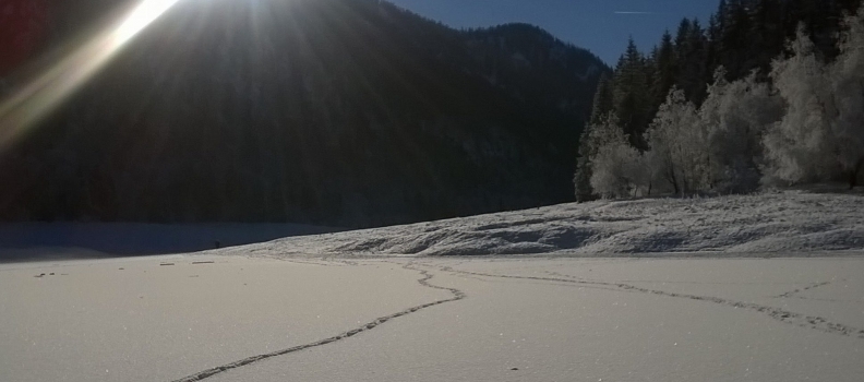 Winterwandern in Ruhpolding