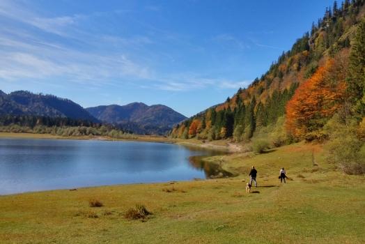 Der Herbst von seiner schönsten Seite…………….